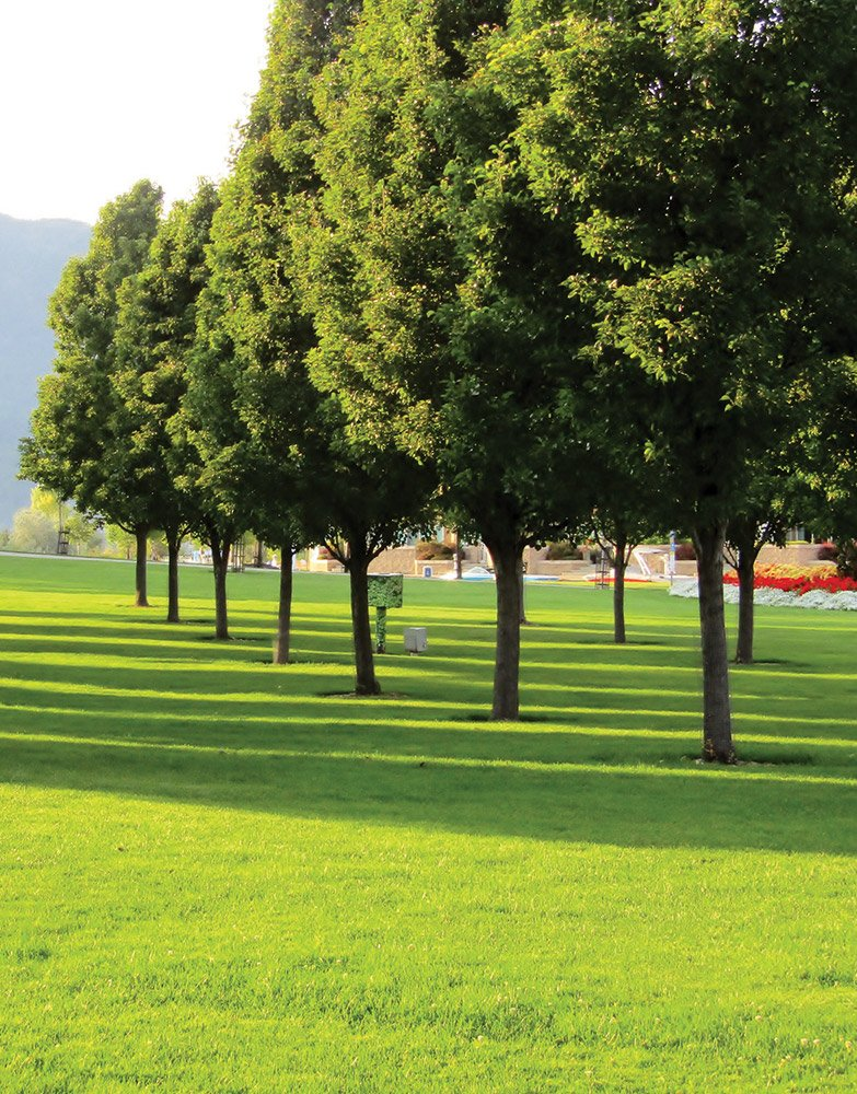 Akin is in close proximity to downtown Kelowna parks and beaches